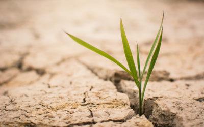A co jeśli wody zabraknie nam jeszcze w tym stuleciu? ABC co ty sam możesz zrobić dla planety.