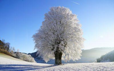 Zima w oczyszczalniach, jak złagodzić jej skutki?