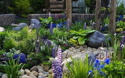 Piękny ogród w wydaniu EKOB-TBA