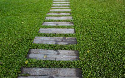 Biopreparaty do pielęgnacji trawnika