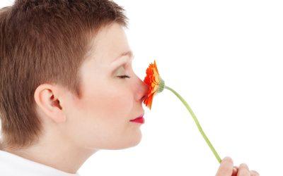Biologiczne dezodoranty i neutralizatory zapachów – jak to działa?